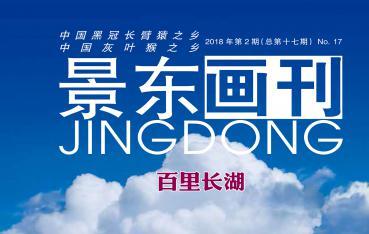 景东画刊2018年第2期(总第十七期):百里长湖
