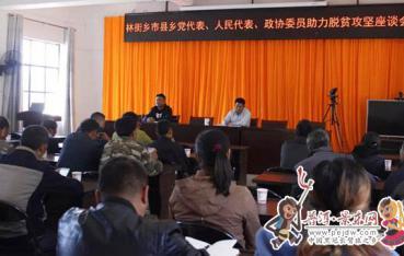 林街乡组织开展党代表、人大代表、政协委员脱贫攻坚座谈会暨政策知识培训会