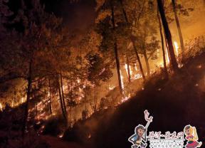 景东县境内发生森林火灾 扑救工作有序有力开展