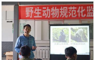 景东管护局西黑冠长臂猿及灰叶猴监测进入规范化