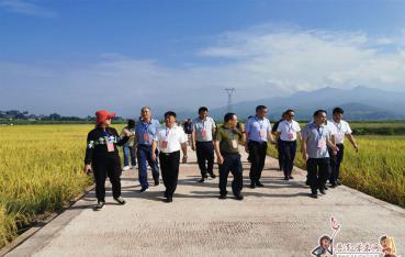 驻普全国人大代表、省人大代表到景东县开展专题调研